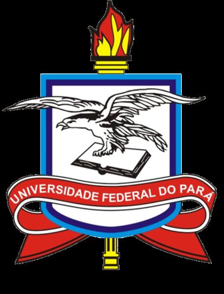 logo ufpa